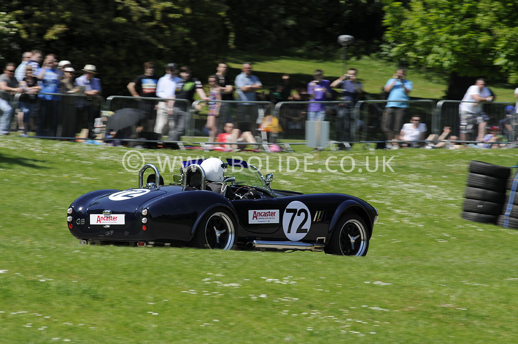 2012-motorsport-at-the-palace-day-2-7239