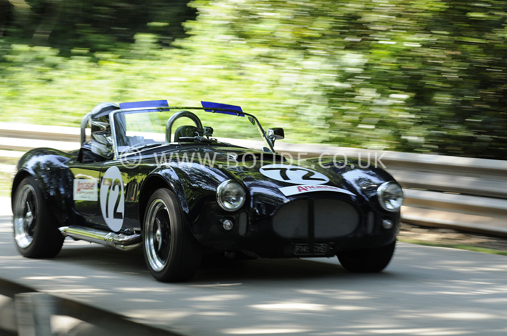 2012-motorsport-at-the-palace-day-2-7539