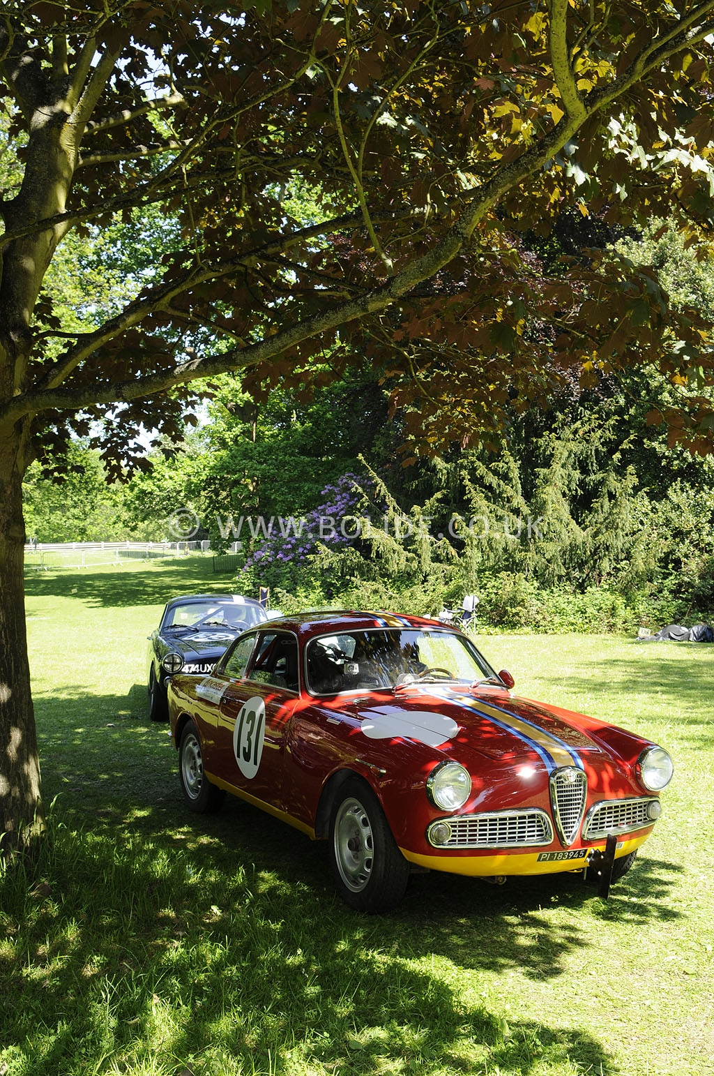 2012-motorsport-at-the-palace-day-2-6800